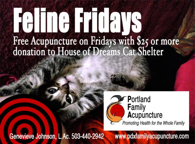 Feline Fridays